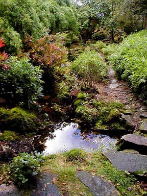 Japanese garden at Eskdale Green.