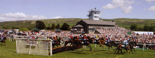 Don't forget Cartmel Races!
