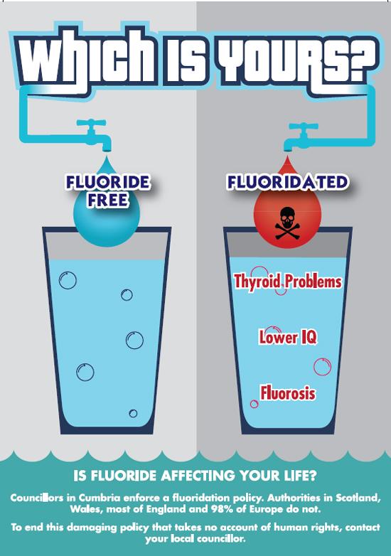 fluoride free cumbria giving voice to those who regard